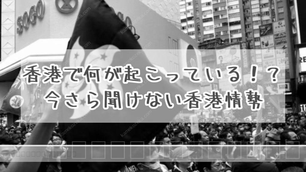 香港 デモ わかり やすく